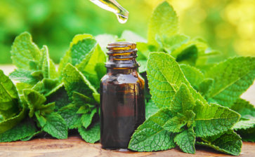 4 benefícios do óleo de hortelã para o organismo